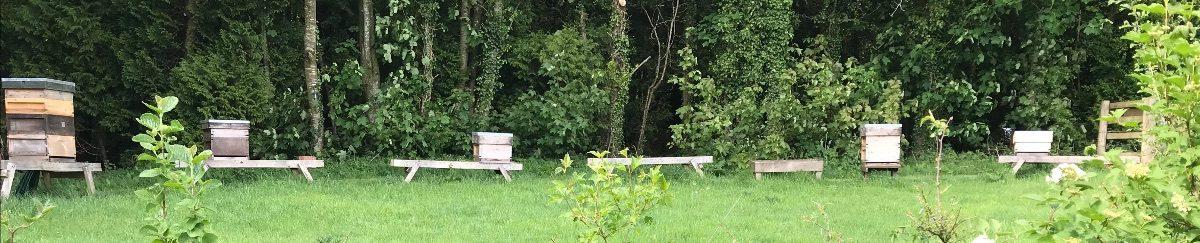 Meon Valley Beekeepers